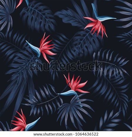 exotic tropical flowers bird of