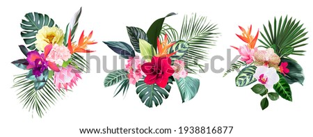 Exotic tropical flowers, orchid, strelitzia, hibiscus, protea, anthurium, palm, monstera leaves vector design bunches. Jungle forest wedding bouquet. Island greenery.Elements are isolated and editable