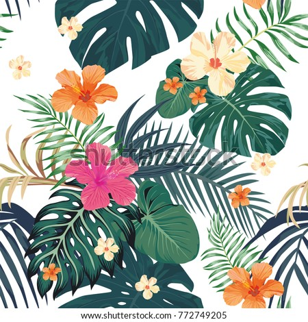 exotic tropical leaves monstera