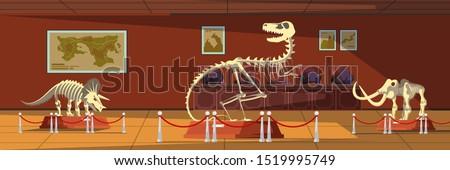 Extinct animals bones vector illustrations set. Prehistoric wildlife. Mammoth, tyrannosaurus rex and triceratops skeletons. Paleontology museum showpieces, ancient creatures remains exposition