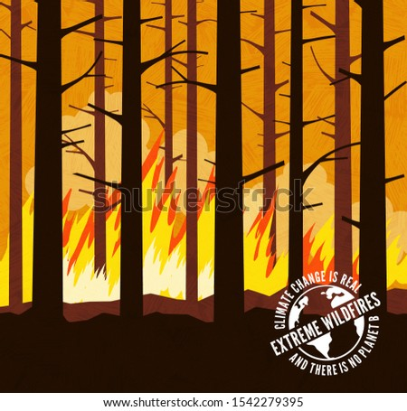 extreme forest wildfire with