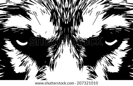 eye contact with a severe wolf