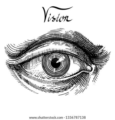 Eye. Eye hand drawn vintage style engraving. Classic vintage style image. Hand drawn illustration for tattoo design, emblem, badge, t-shirt print. Eye icon. Vector illustration