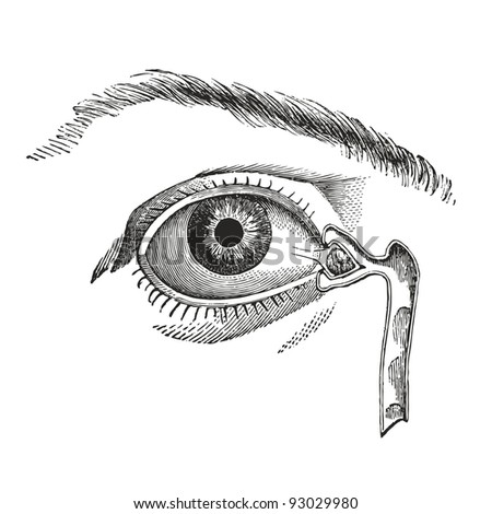 eye     vintage engraved