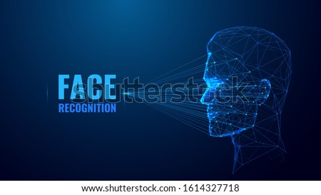 face recognition low poly