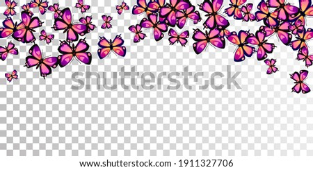 fairy purple butterflies