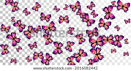fairy purple butterflies