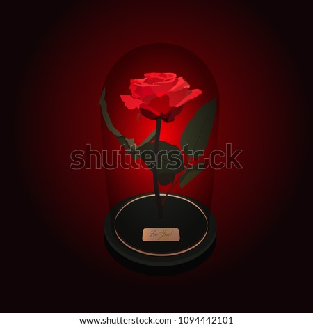 Fairy red rose under a glass dome on black background. The Beauty and the Beast story.