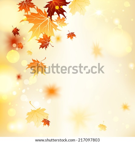 fall background with maple