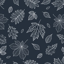 Fall of the leaves. Autumn leaves are drawn with chalk on the black chalkboard. Seamless pattern for textile, wallpapers, gift wrap and scrapbook. Vector illustration.