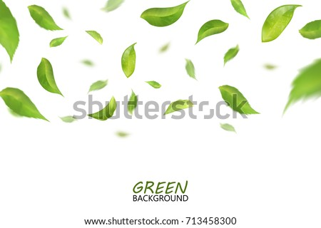 Falling fresh flying green leaves, quality 3d imitation. Vector