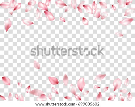 Falling Pink Flower Petal Confetti Vector. Floral isolated pattern on transparent background. Flying spring blossom petals, flower petals border, cherry bloom petals. Card design, border, text place.