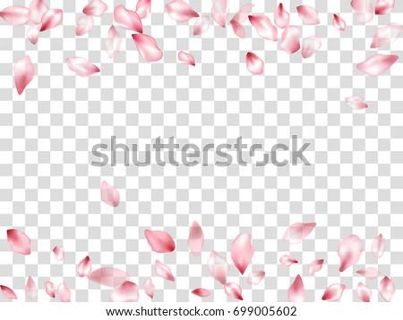 falling pink flower petal