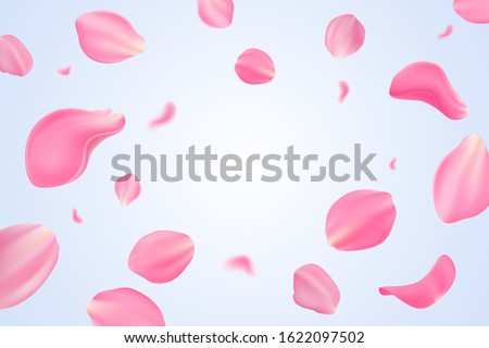 Falling pink tulip petals isolated on light blue background. Vector illustration with beauty tulip petals. Applicable for design of greeting cards on March 8, wedding and St. Valentine's Day. Eps 10