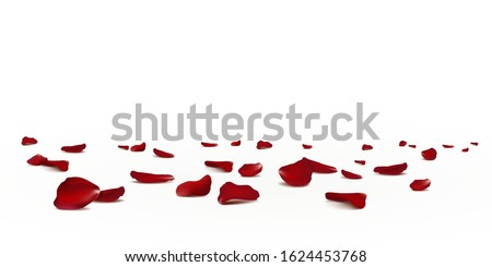 Falling red rose petals seasonal confetti, blossom elements flying isolated. Abstract floral background with beauty roses petal. design for greeting cards. Rose petals fall to the floor.