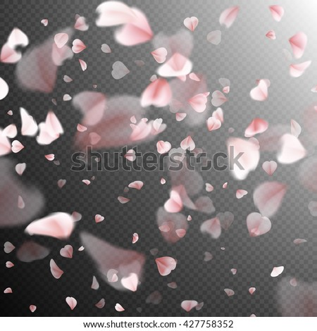 falling sakura pink petals