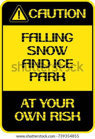 falling snow and icepark at