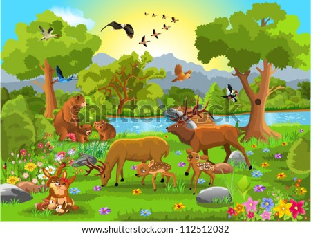 families of wild animals
