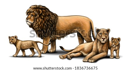 family of lions pride color