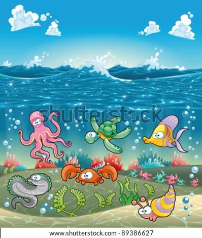 family of marine animals under