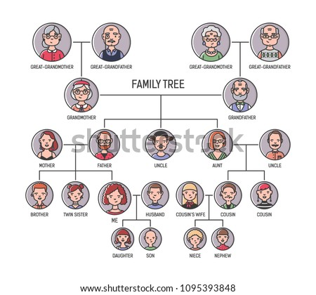 Family tree, pedigree or ancestry chart template. Cute men's and women's portraits in circular frames connected by lines. Links between relatives. Colorful vector illustration in lineart style