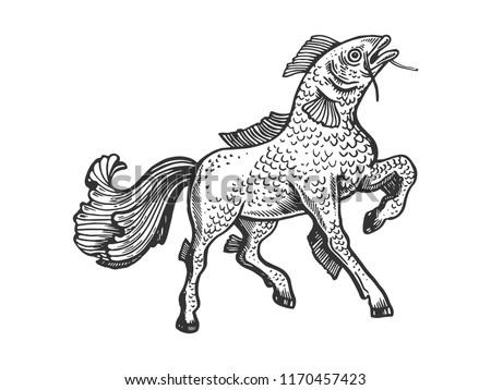 fantastic fabulous fish horse