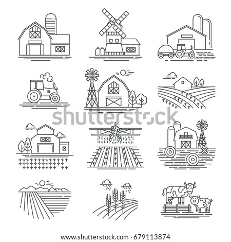 farm and farming fields linear