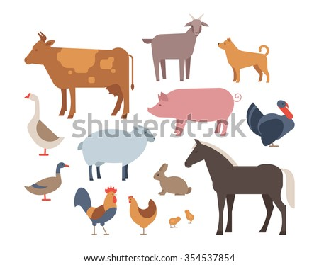 farm animals and pets vector