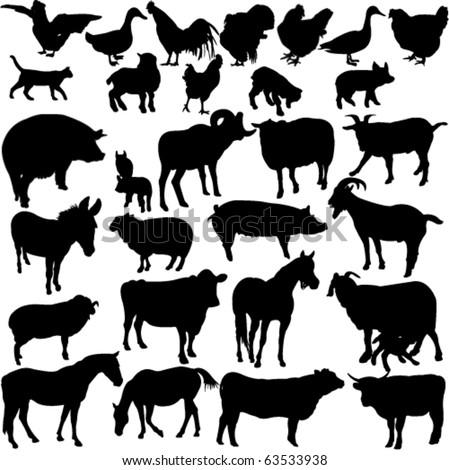 farm animals collection 2 - vector