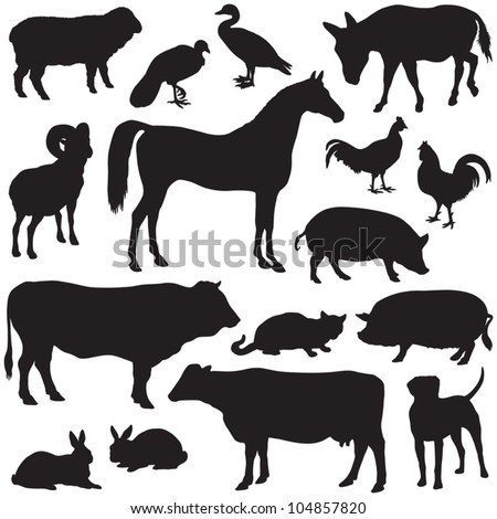 Farm animals collection - vector silhouette
