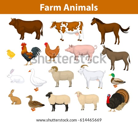farm animals collection with...