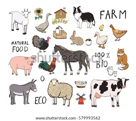 farm animals color set