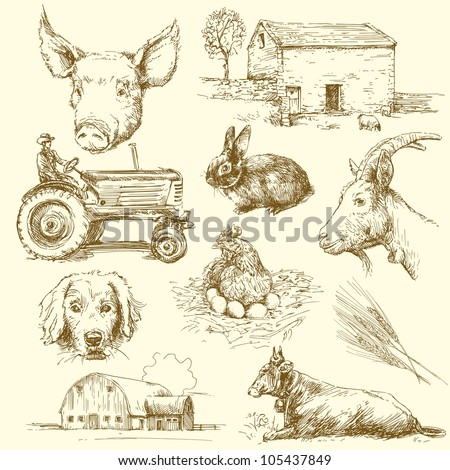 farm animals - hand drawn collection