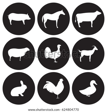 Farm animals icons set. White on a black background