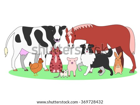 farm animals in a group
