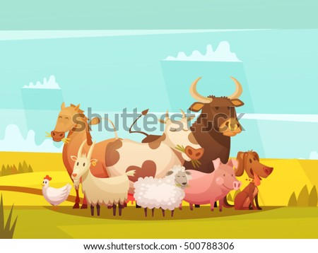 farm animals on sunny day in