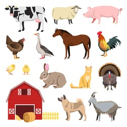 Farm animals set in flat style and related items. Cow, sheep, dog, cat, goat, horse, turkey, goose, rooster,  chick, chicken, pig, rabbit. vector illustration.