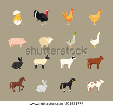 Farm animals set in flat vector style with a chicken  turkey  hen  cock  pig  sheep  goose  duck  rabbit  goat  beef coe  dairy cow  horse and shire horse