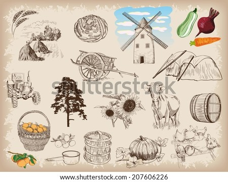 farm animals sketches objects...