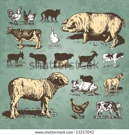 farm animals vintage set, vector