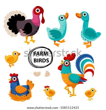 farm birds family cartoon flat illustration. rooster hen chicken egg, goose, turkey. Vector illustration isolated on white background