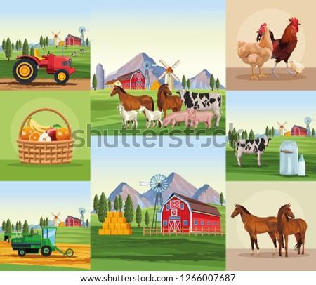 Farm cartoons set