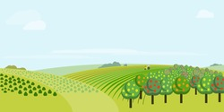 Farm field landscape. Rural scenery with fruit garden, corn-clad field small hill illustration. Vector tractor working on green grass farmland. Countryside pasture panorama. Farming background