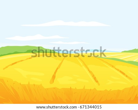 farm field of wheat