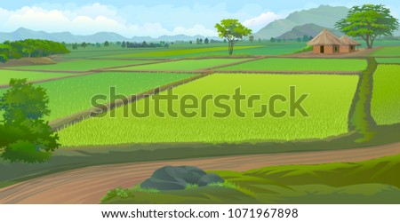 farm fields next to a road and