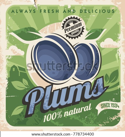 Farm fresh organic plums retro poster design. Plum image on old paper texture. Vector food and fruits illustration.