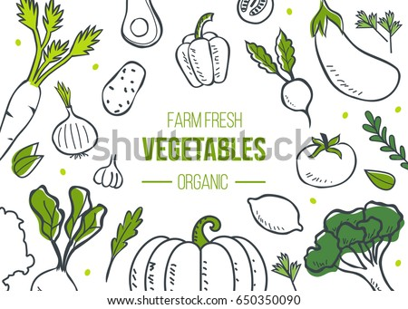 Farm fresh vegetables poster. Sketch style vector illustration.
