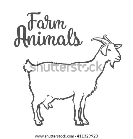 Farm pet goat sketch drawn by hand, cattle, milk and goat meat, one farm horned animal on a white background, vector illustration livestock, farm animal, sketch icon