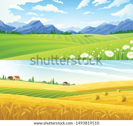 farm scene summer rural