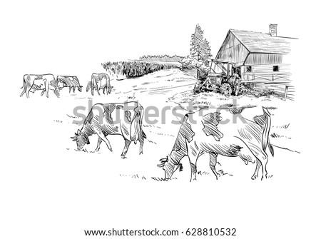 farm sketch vector illustration....